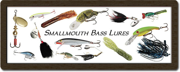how to catch smallmouth bass, Hard Baits