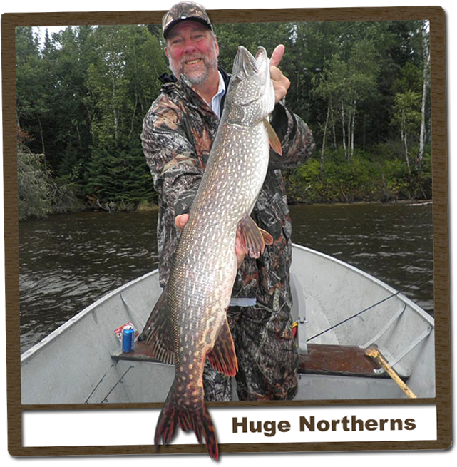 pike fishing ontario