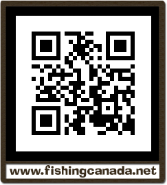 Fly in fishing cottages northern ontario for Ontario non resident fishing license